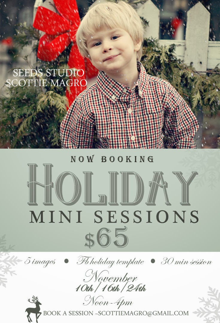 2013 Holiday MiniSession