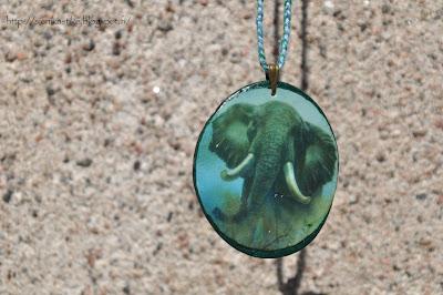 norsu, elephant