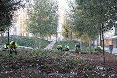 Manifest en defensa del patrimoni verd de la ciutat