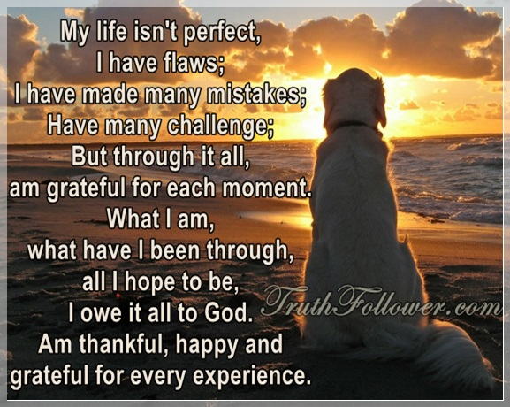 life isn t perfect quotes