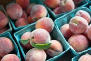 Potomac Vegetable Farm CSA 2012