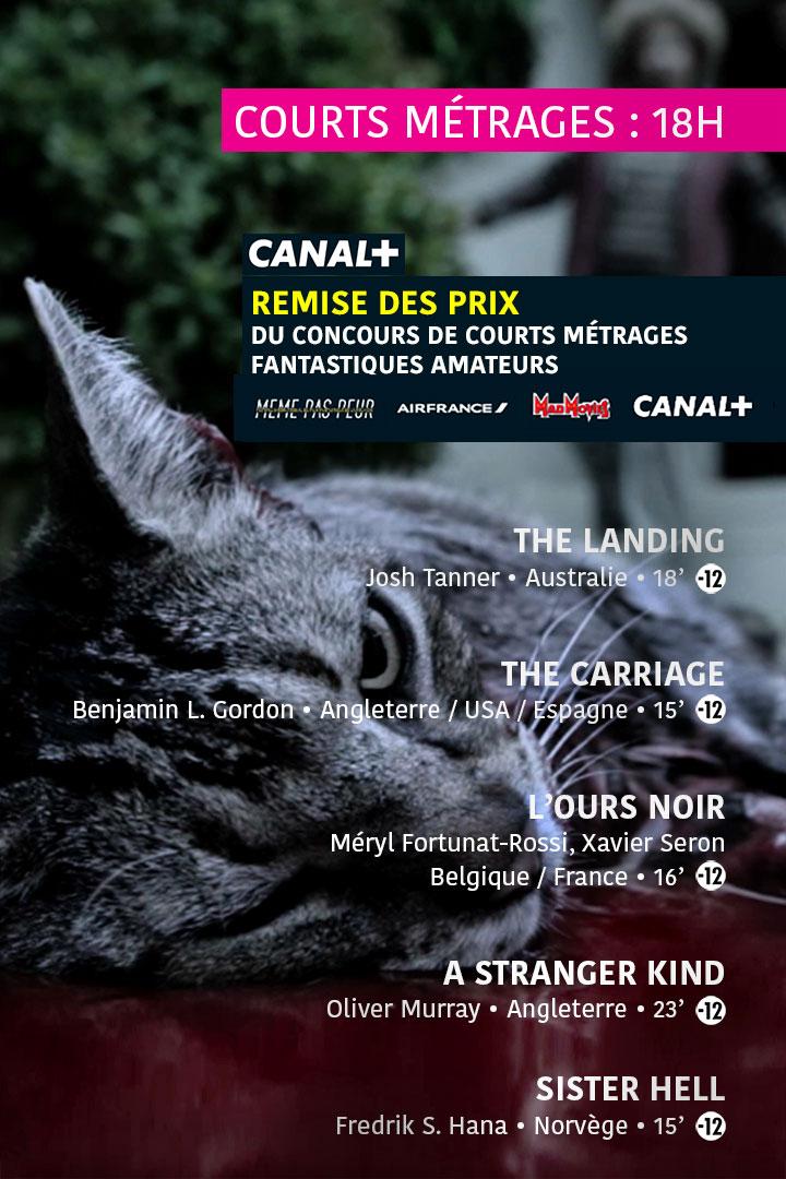 Festival MEME PAS PEUR 2016 - Samedi - Séance Courts Métrages 2