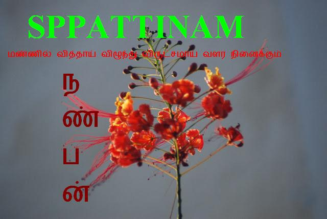 S.p.pattinam Nanban