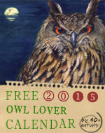 Owl Lover 2015 Calendar