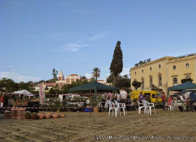 Mediterranean Garden Fair 2