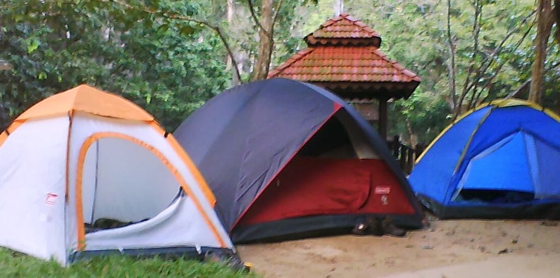 Program & Guide Rainforest Camping