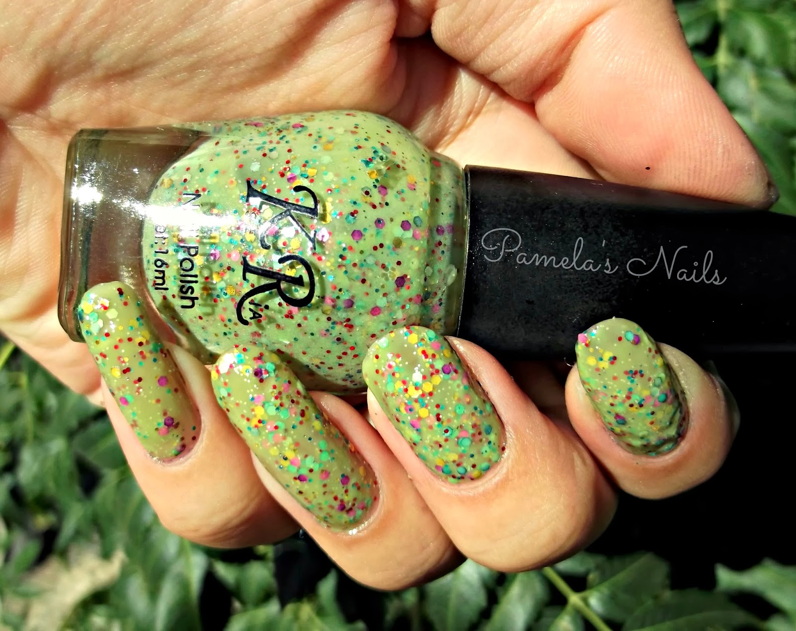 Pamela\'s Nails