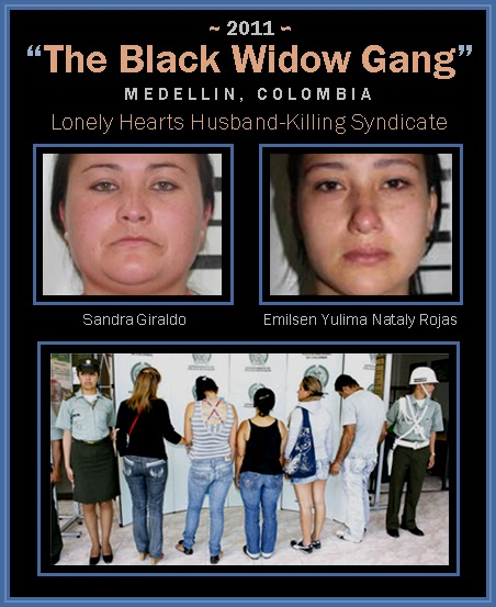 black widow killers Hickey refers to female serial killers as the quiet killers many of the serial killers in hicky's data set could be described as either black widows, who killed their husbands or nurses who victimized their patience.