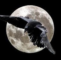El cuervo del master