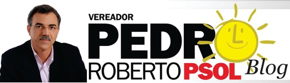 Blog Vereador Pedro Roberto Gomes