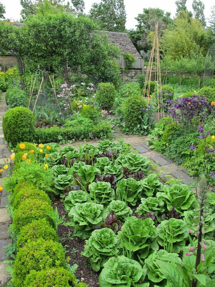Plant The Gardens And Layout By The Kitchen Garden Design Ideas photo - 7