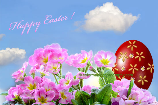 Easter greeting card with Easter egg and primroses