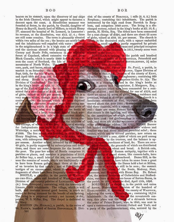 Greyhound with Red Wooly Hat illustration by Kelly Stevens on Etsy