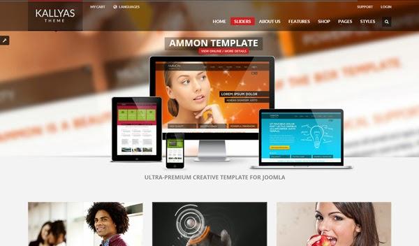 kallyas-responsive-multipurpose-wordpress-theme
