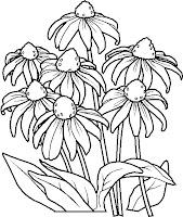imagini de colorat flori