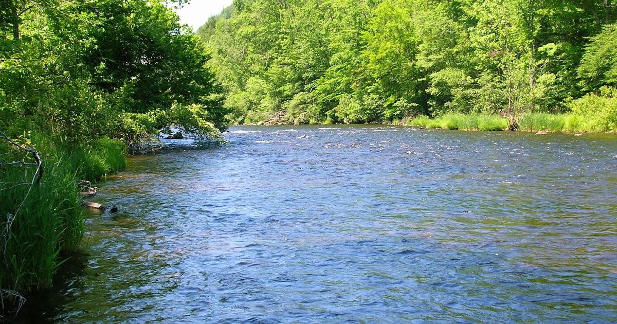 Small stream reflections the farmington for Farmington river fishing