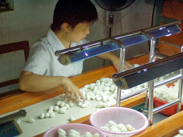 Suzhou Silk production