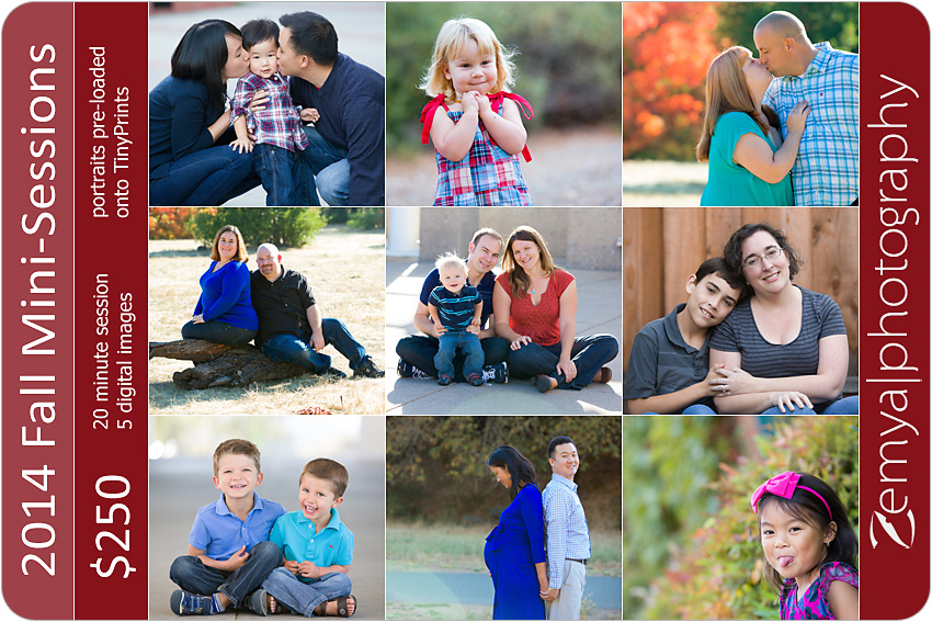 2014 mini sessions photography