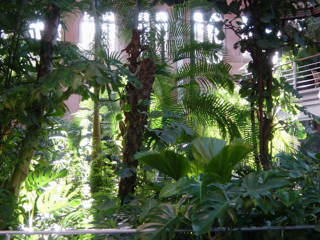 Tropical Plants at Atocha Railway Station in Madrid