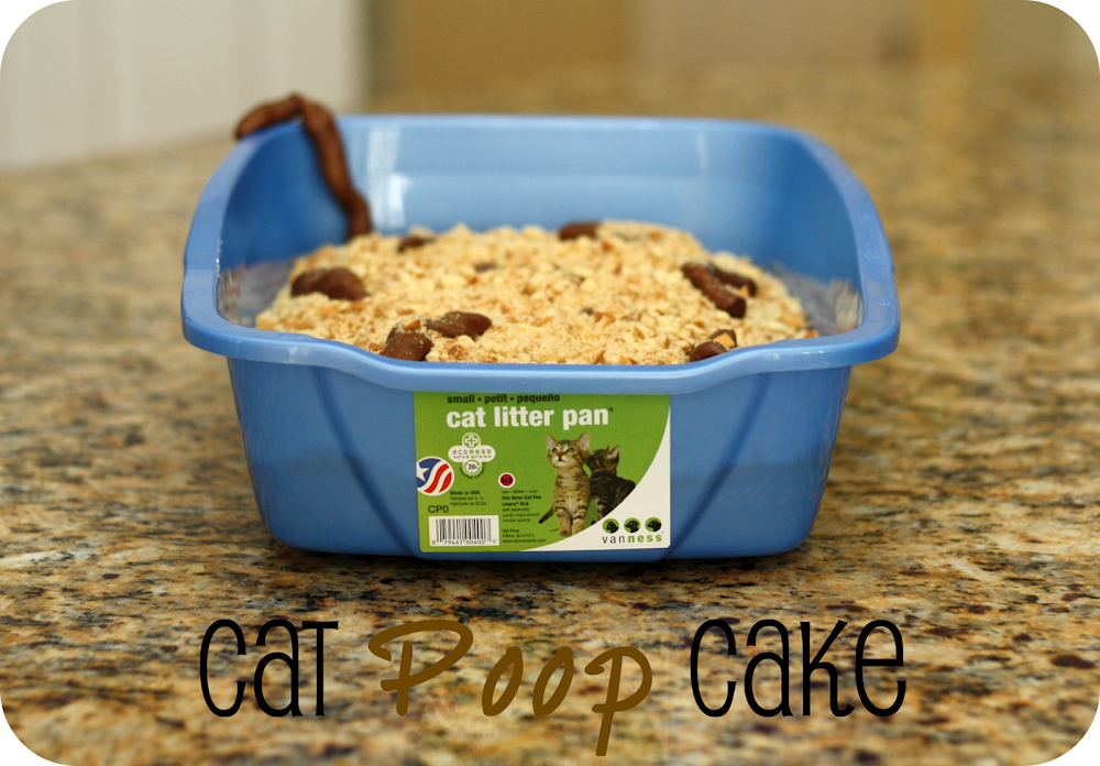 gross cat poop cake