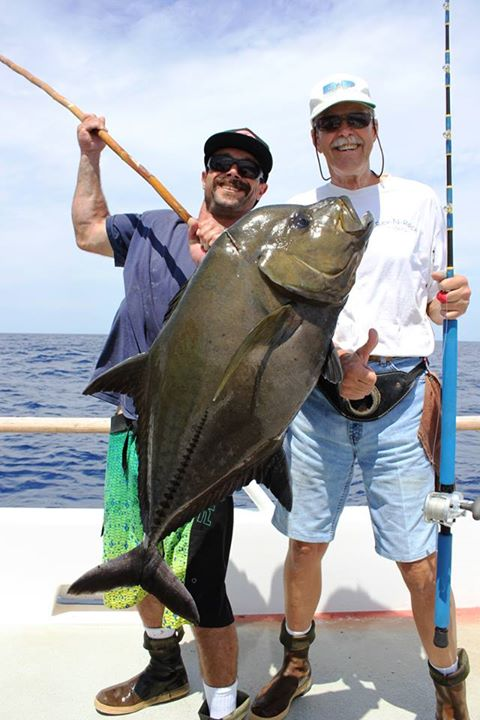 Big fishes of the world trevally jack black caranx lugubris for What is a jack fish