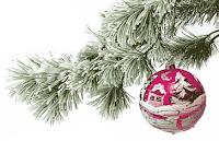 Przepisy na Wigilię i Boże Narodzenie - kliknij w zdjęcie