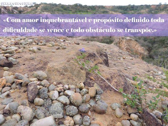 Frase Amor Inquebrantável de Orison Swett Marden Facebook WhatsApp Google+