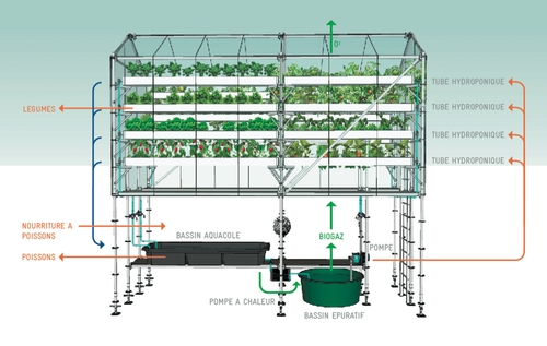 02-Damien-Chivialle-Container-Greenhouse-Urban-Farm-Units
