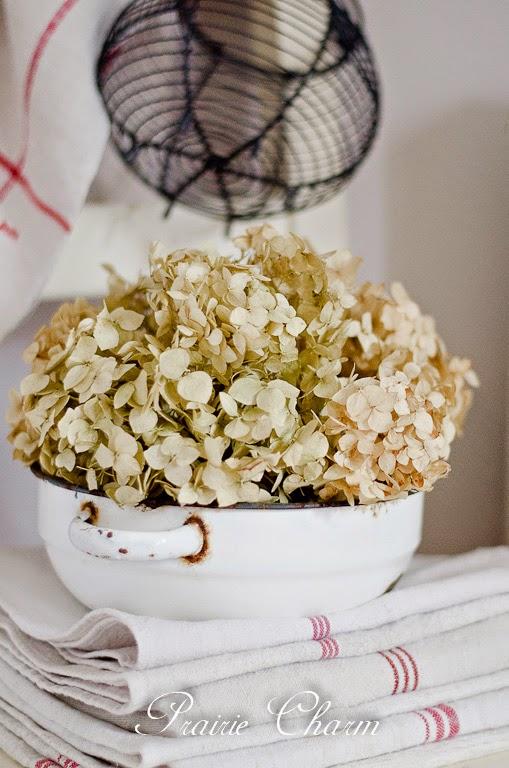 Enamel and dried hydrangea / Smalt a sušená hortenzia