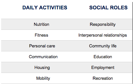 classifying social participation into 12 life habit categories of either social roles or daily activities interesting two dimensional perspective