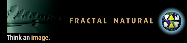 fractal natural van ray