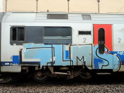TLMS GRAFFITI