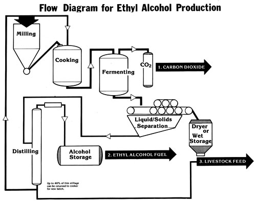 see what i saw  production of ethyl alcohol