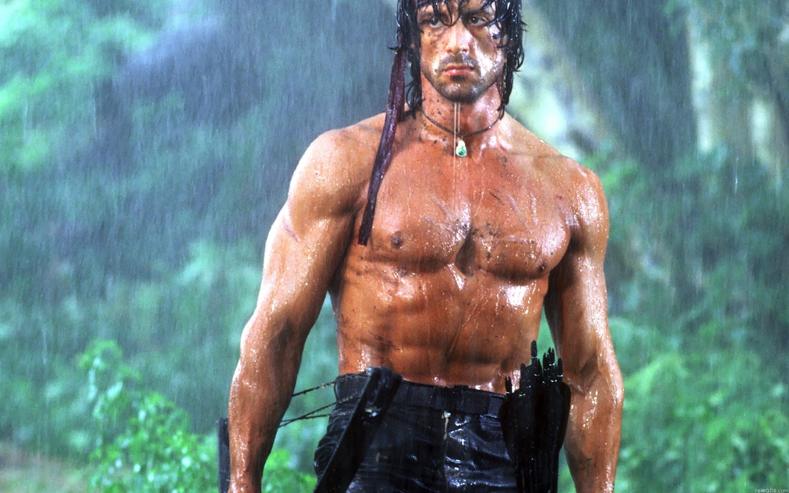 http://3.bp.blogspot.com/-pBG47rVquik/T5zUy9432eI/AAAAAAAABew/yO5SBLp1b8Y/s1600/Wallpaper-Rambo-Sylvester-Stallone-the-hero-desktop.jpg