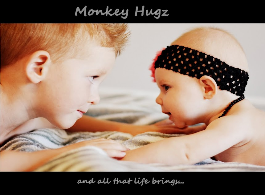 Monkey Hugz