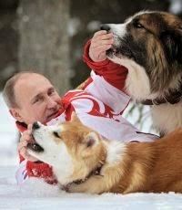 Путин унизил нацию. Александр Зубченко