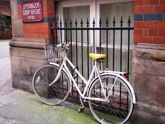 #15 Bikes Wallpaper