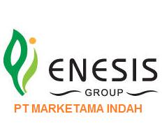 Enesis Group