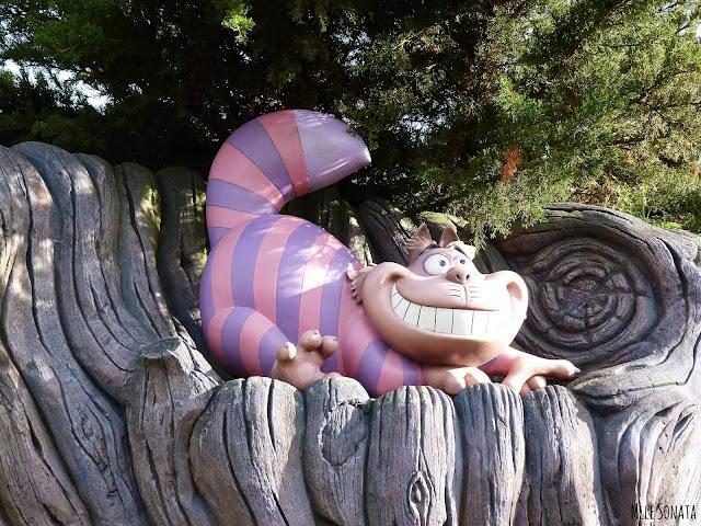 Chat dans le labyrinthe d'Alice aux pays des merveilles.