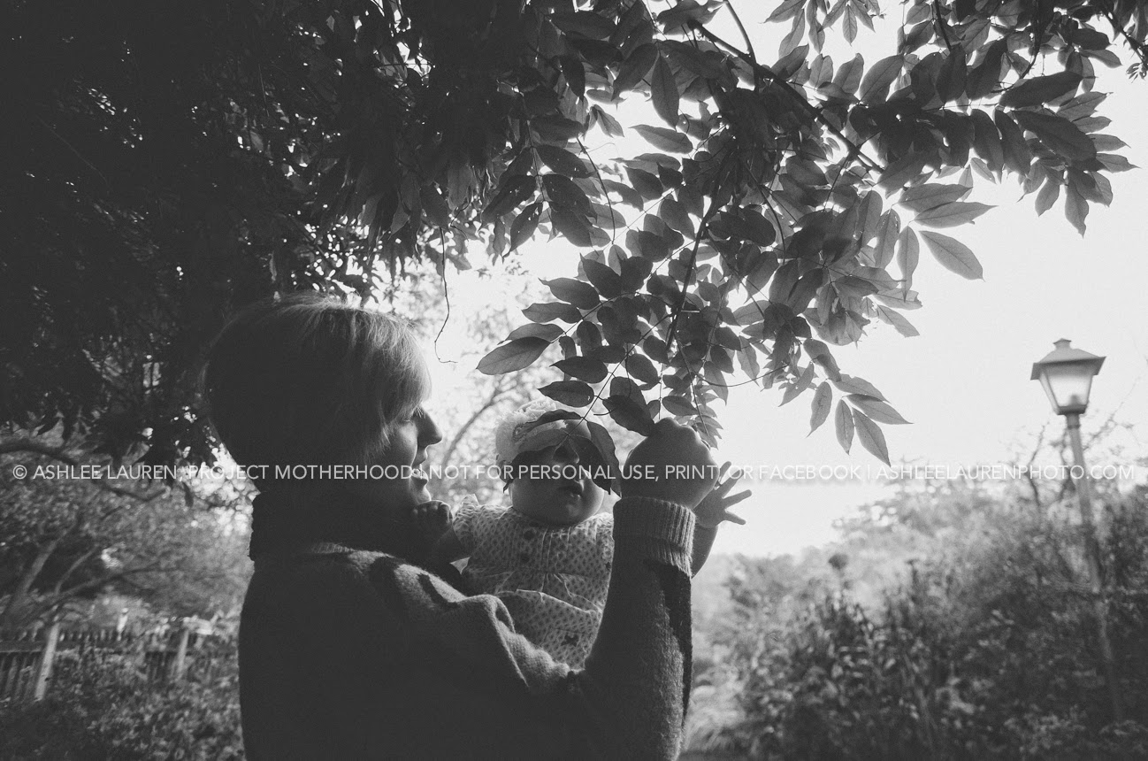 modern natural light photography in indianapolis parks