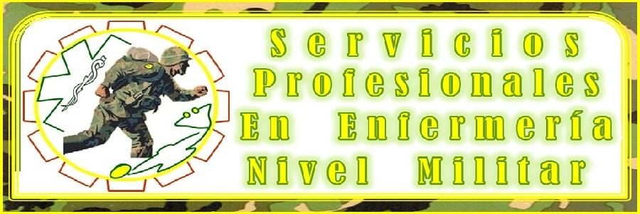 Servicios en Enfermería Nivel Militar