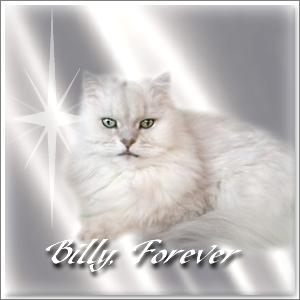Billy  RIP