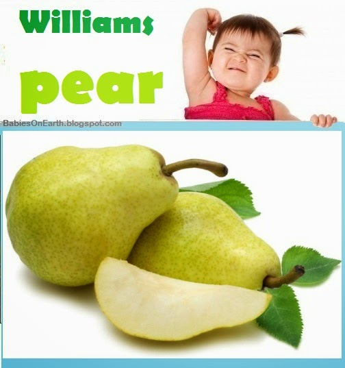 Baby Williams Pear