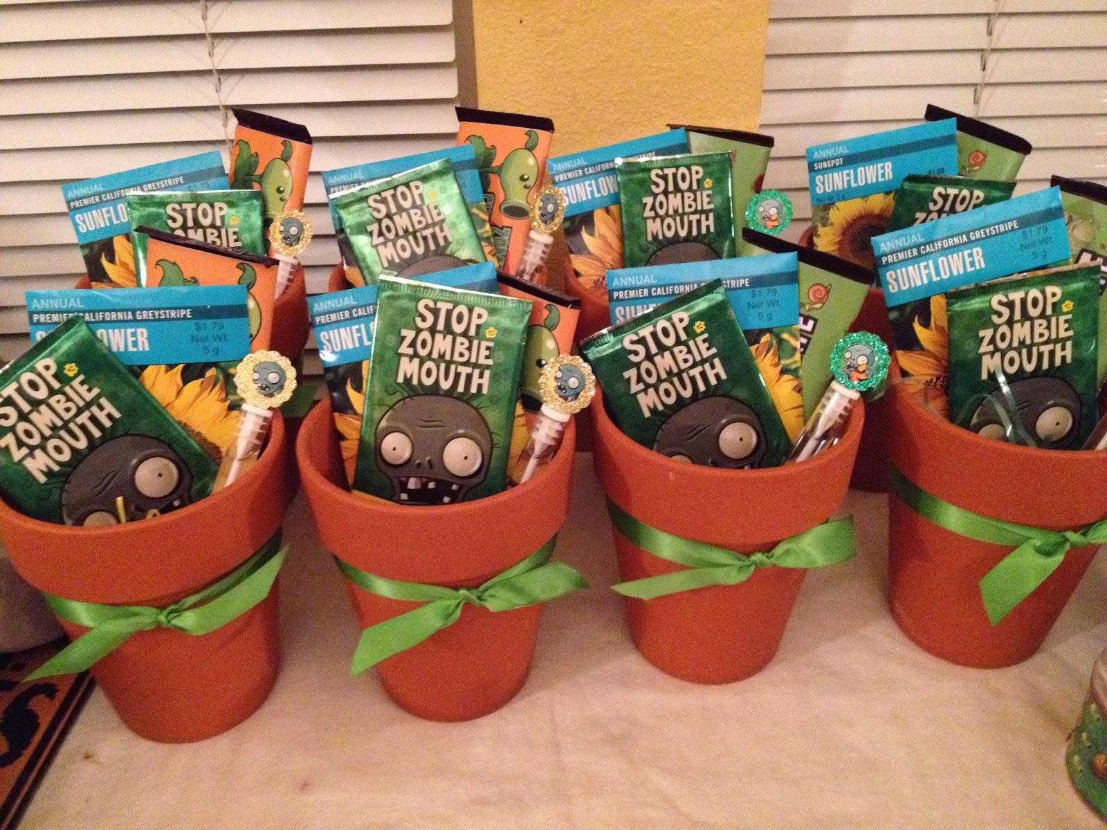 Cranberry Corner Conors Plants vs Zombies Party
