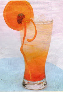 Marmalade_Orange_Soda