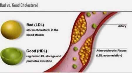Jenis Makanan Untuk Menurunkan Kolesterol Jahat