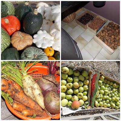 Courges, noix, noisettes, châtaignes, carottes, betteraves, pommes