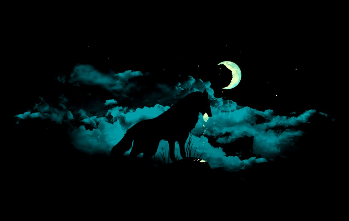 Wonderful Wallpaper Night Abstract - animals-wallpapers-black-wolf-night-moon  2018.jpg