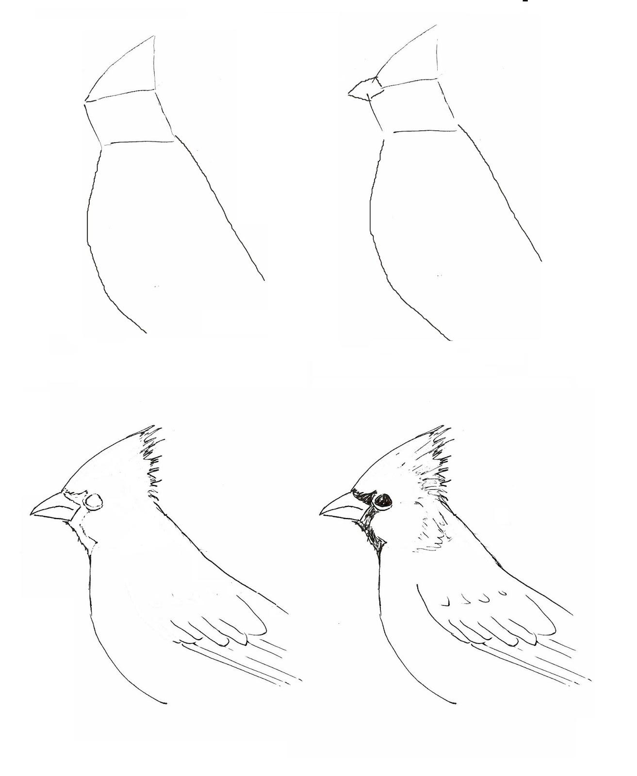 cardinals art class ideas