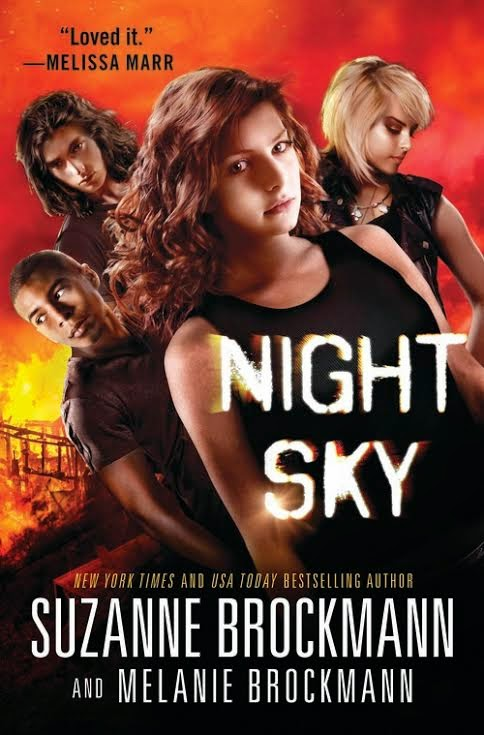 https://www.goodreads.com/book/show/20565136-night-sky?from_search=true
